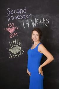 pregnancy series