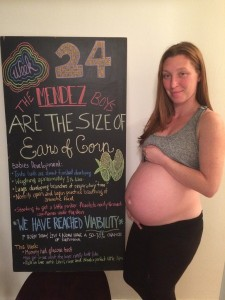 twin pregnancy at 24 weeks