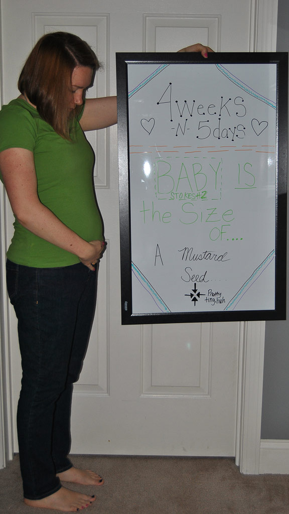 4 weeks pregnant with twins belly