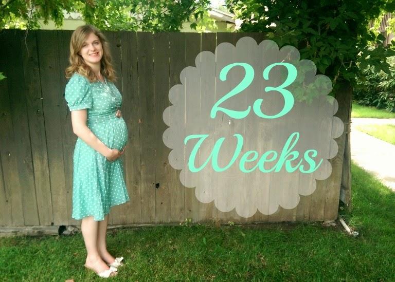 23 week baby belly